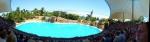 Delfinarium @ Loro Parque